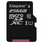 Kingston Class 10 UHS-I microSDHC/microSDXC [SDC10G2/256GBSP]