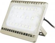 Philips BVP161 50W LED43 220-240V 4000K WB