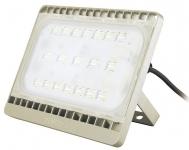Philips BVP161 70W LED60 220-240V 4000K WB