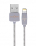 Remax Regor Data Cable [RC-098I-SILVER]