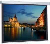 Projecta ProScreen 179x280 см, 125
