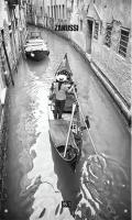 Zanussi Venezia (GWH10FONTEGLASSVENEZIA)