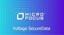Надійне шифрування Micro Focus Voltage SecureData