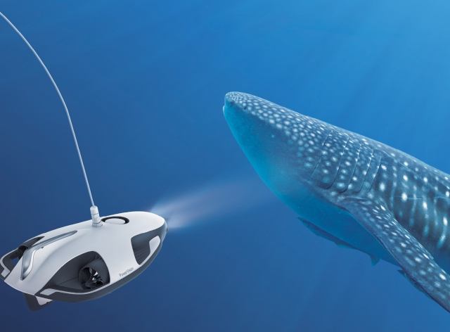 Підводний світ у форматі 4К з PowerRay