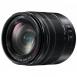 Panasonic Micro 4/3 Lens 14-140mm f/3.5-5.6 ASPH. POWER O.I.S. Lumix G Vario II