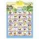 Smart Koala Аудіо постер інтерактивний - Дикі тварини