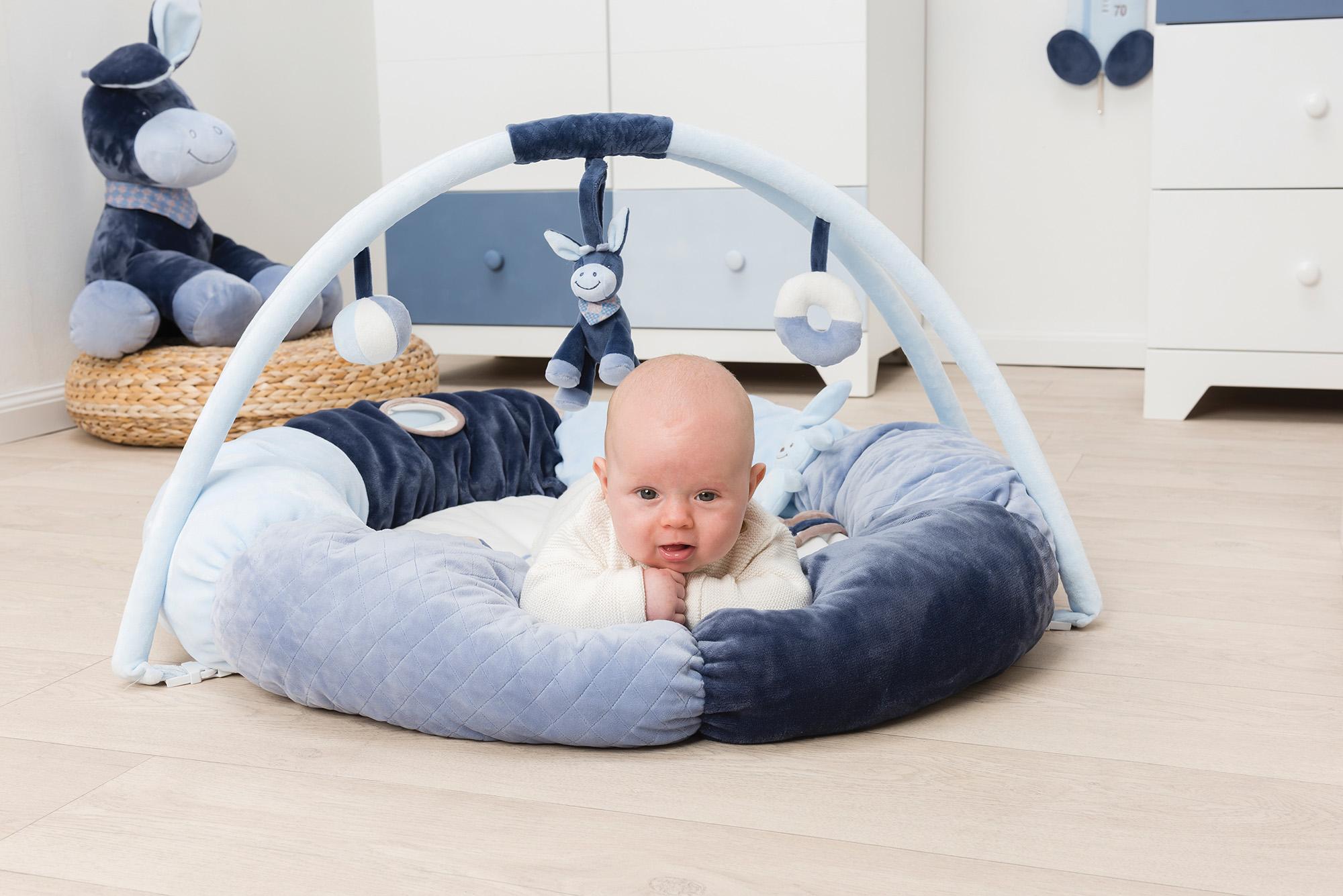 Nattou Развивающий коврик с дугами и подушками Алекс и Бибу